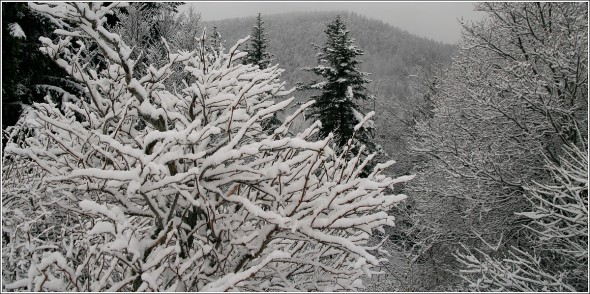 Lans en Vercors - La Sierre 1400m - 18 novembre 2010