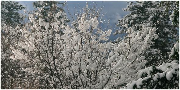 Lans en Vercors - 20 février 2011