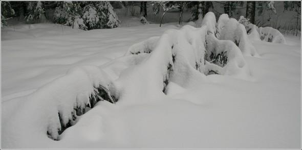 Lans en Vercors - 27 février 2011