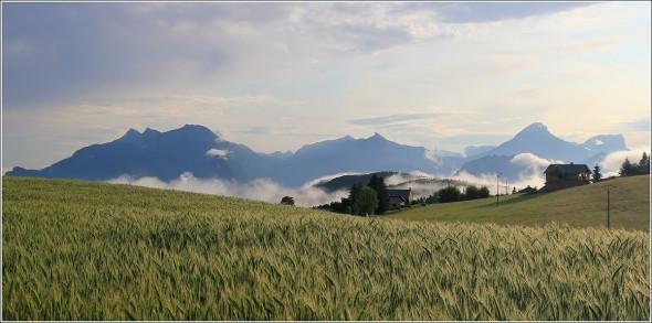 Vercors et Chartreuse - 6 juin 2011 - 7h20