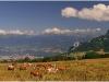 Belledonne depuis le Vercors - 19 juillet 2009