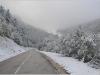 Neige précoce en Vercors - 11 octobre 2013