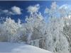 Lans en Vercors - 21 janvier 2012