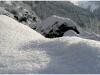 Lans en Vercors - 2 janvier 2010