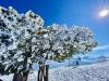 Ski de rando - 21 mars 2021