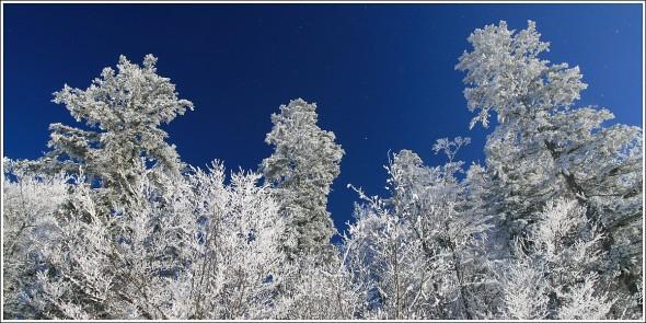 Lans en Vercors - La Sierre - 1400m - 3 janvier 2011