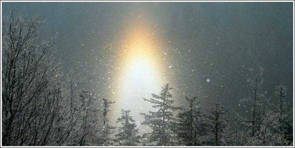Lans en Vercors - La Sierre - 1400m - 3 janvier 2010