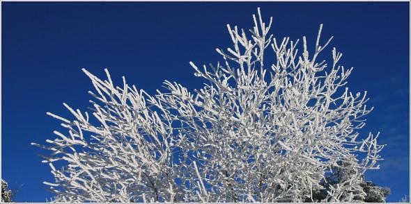 Lans en Vercors - 18 décembre 2010