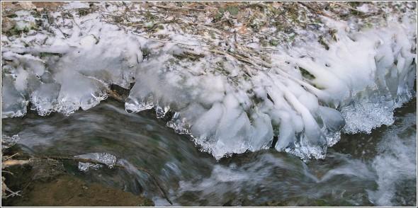Glace sur les rives du Furon - Lans en Vercors - 23 janvier 2011