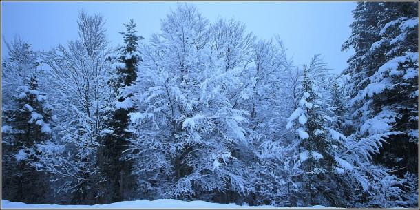 Lans en Vercors - La Sierre - 1400m - 18 mars 2012