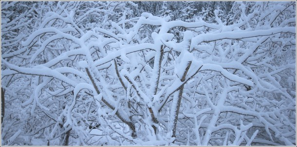 Lans en Vercors - La Sierre - 1400m - 11 avril 2012